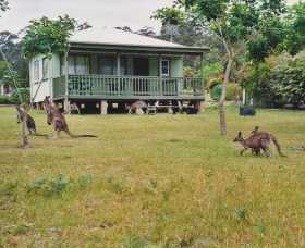 Berringer Lake Holiday Cottages - Great Ocean Road Tourism