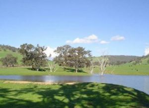Hillview Farmstay - Great Ocean Road Tourism