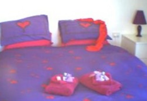 Aloomba Lavender - Accommodation - Great Ocean Road Tourism