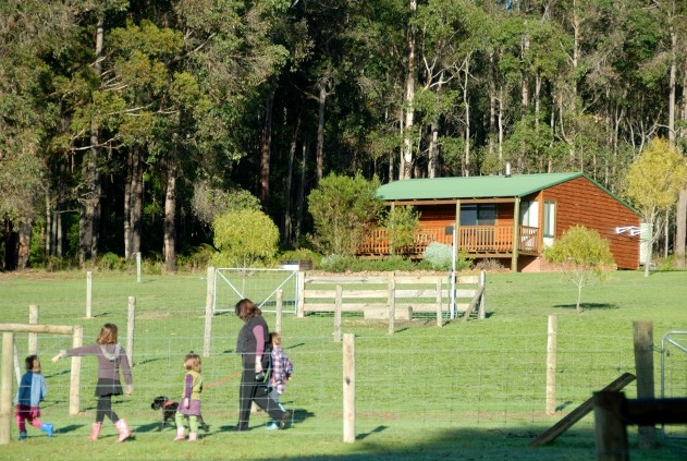 Diamond Forest Farm Stay - Great Ocean Road Tourism