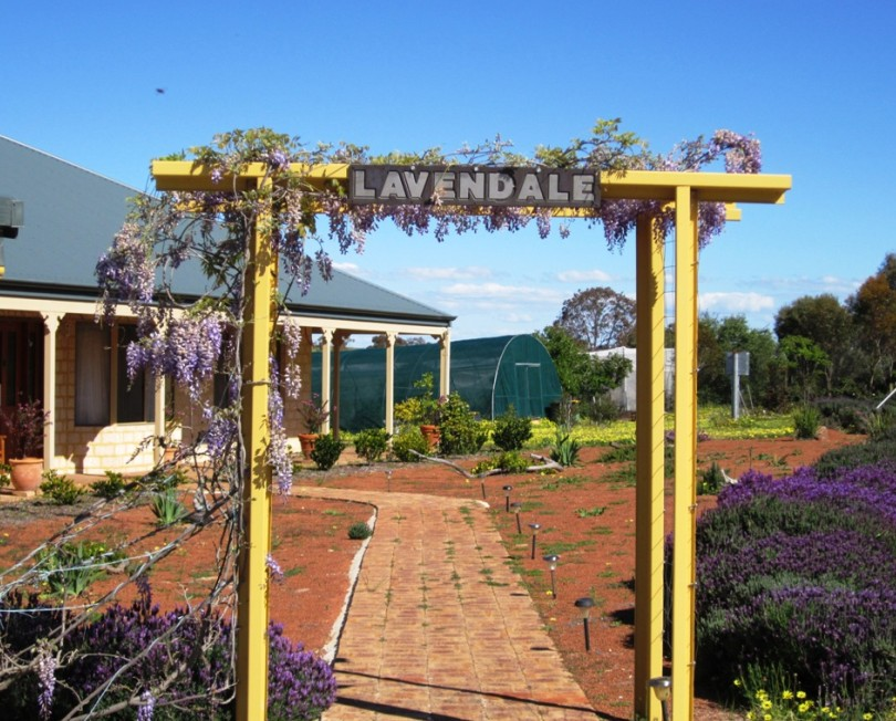 Lavendale Farmstay and Cottages - Great Ocean Road Tourism