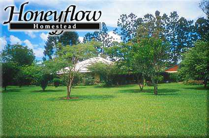 Honeyflow Homestead