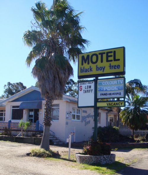Blackboy Tree Motel - Great Ocean Road Tourism