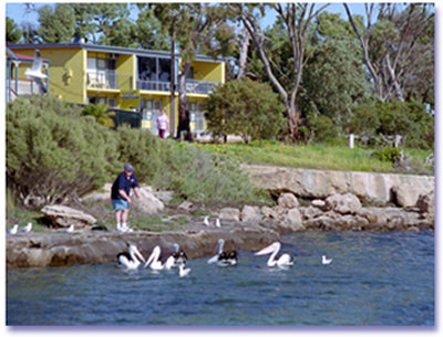 Almonta Holiday Apartments - Great Ocean Road Tourism