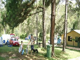 Glasshouse Mountains Holiday Village