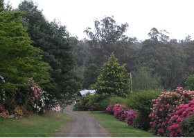 Mountain Rivers Lodge - Great Ocean Road Tourism
