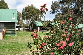 Derwent Bridge Chalets  Studios - Great Ocean Road Tourism