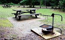 Bellbird campground - Great Ocean Road Tourism
