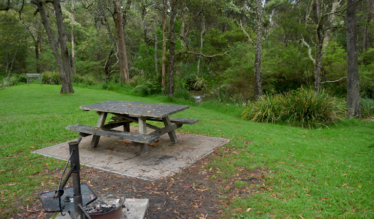 Chaelundi campground - Great Ocean Road Tourism