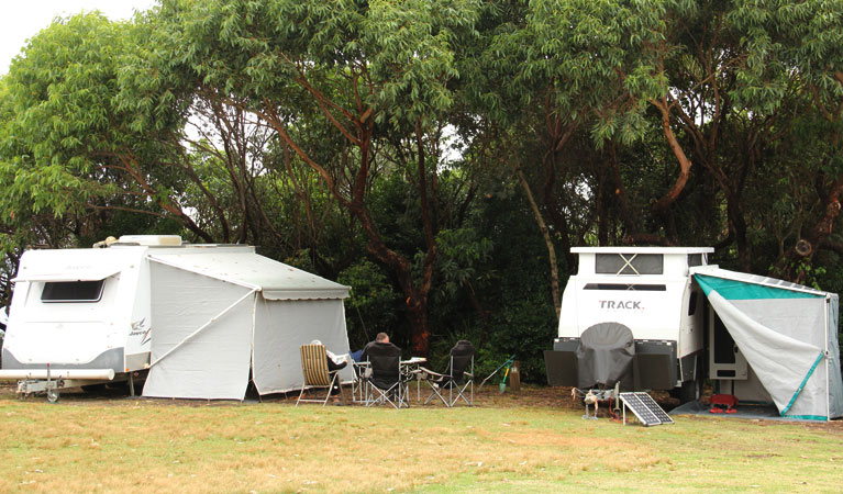 Pretty Beach campground - Murramarang National Park - Great Ocean Road Tourism