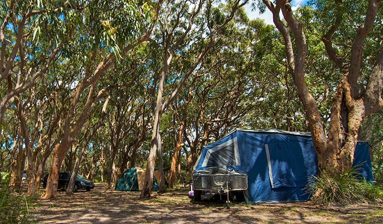 Stewart and Lloyds campground - Great Ocean Road Tourism