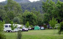 Sandy Hollow Tourist Park - Sandy Hollow - Great Ocean Road Tourism