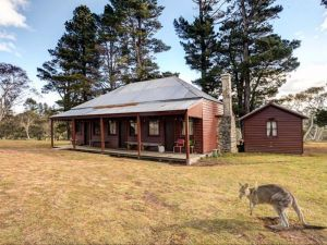 The Pines Cottage - Great Ocean Road Tourism
