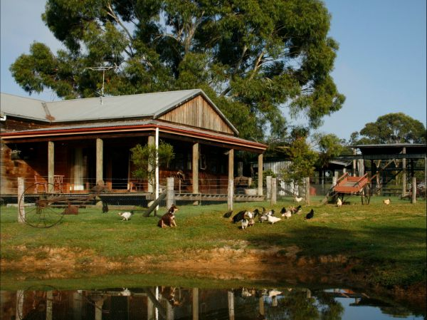 Tobruk Sydney Farm Stay - Great Ocean Road Tourism