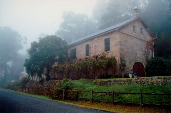 Tizzana Winery Bed And Breakfast - Great Ocean Road Tourism