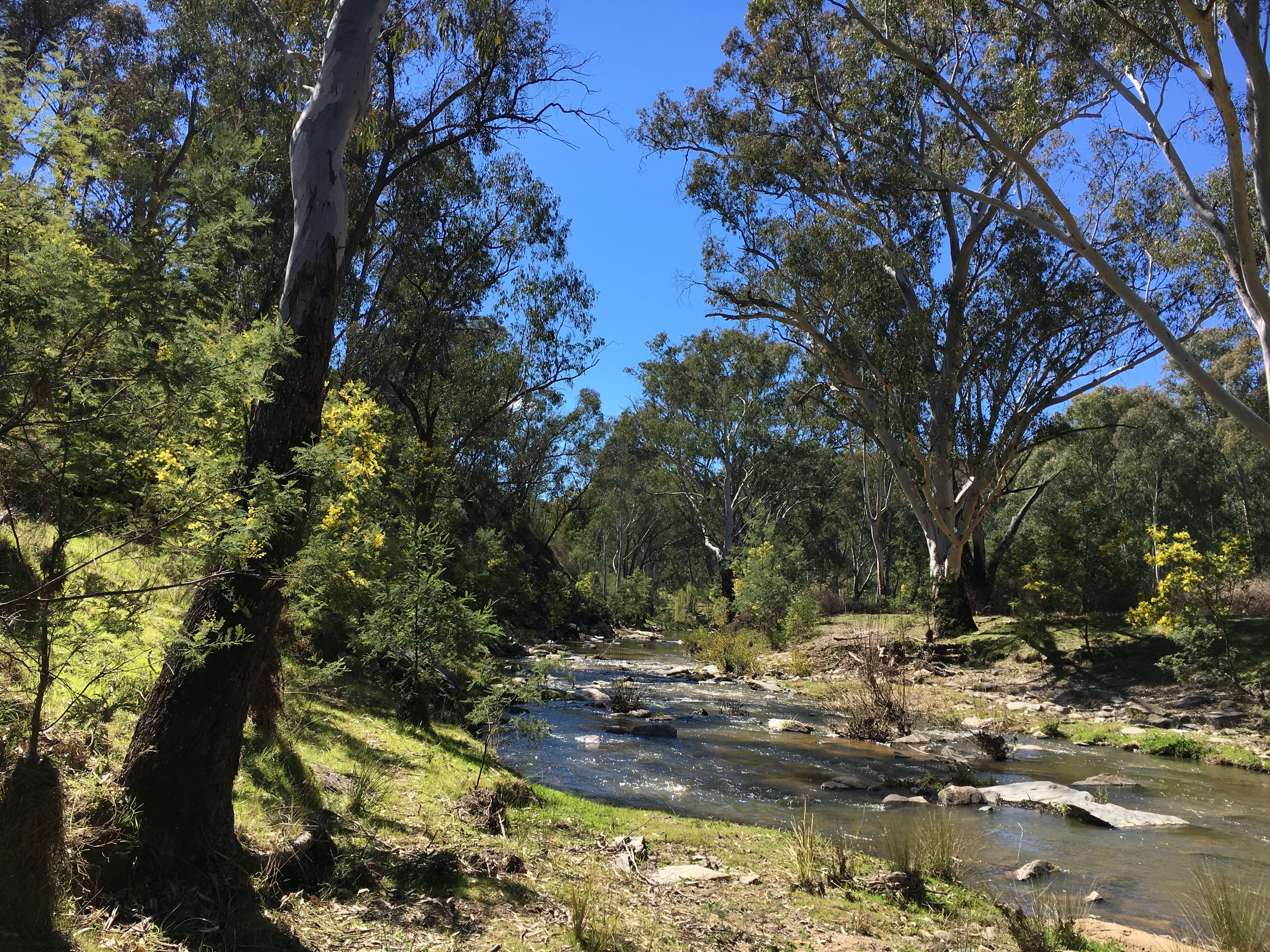 Highfield Farm and Woodland Bush Campsites - Great Ocean Road Tourism