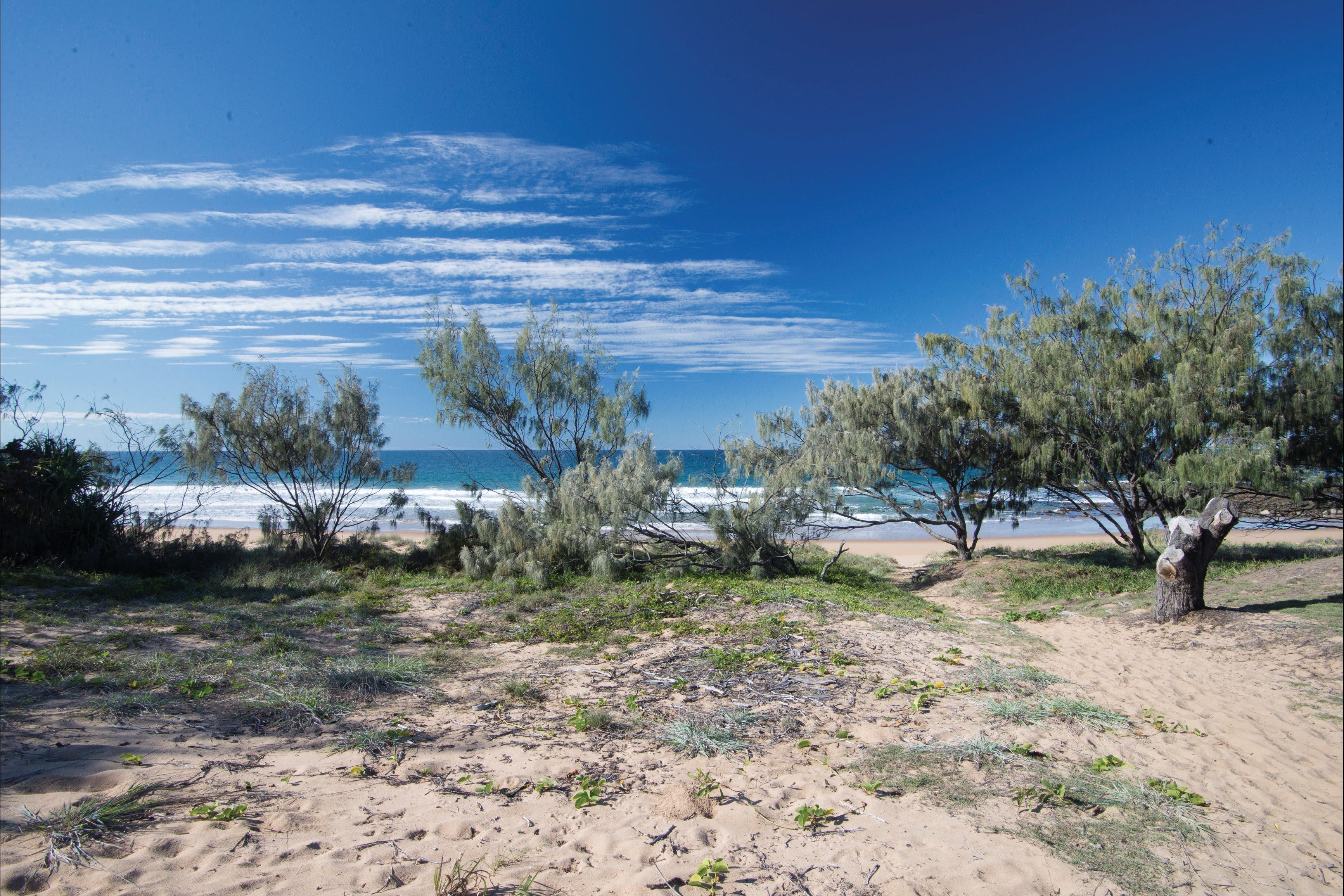 Deepwater National Park camping - Great Ocean Road Tourism
