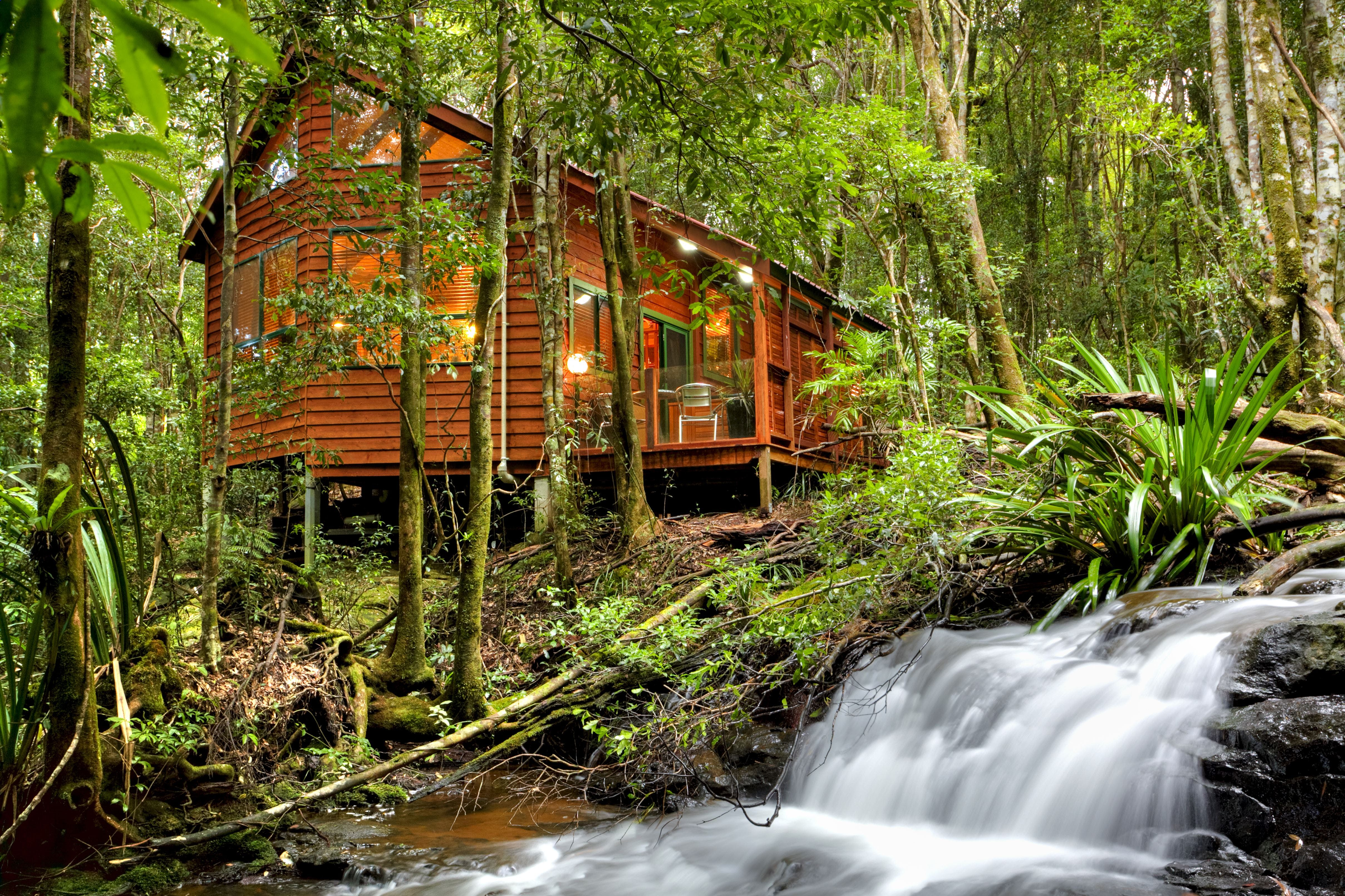 The Mouses House - Rainforest Retreat - Great Ocean Road Tourism