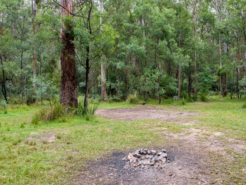 Blue Gum Flat campground - Great Ocean Road Tourism