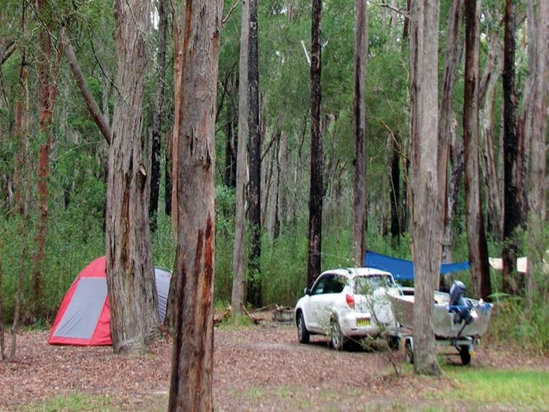 Wallingat River campground - Great Ocean Road Tourism