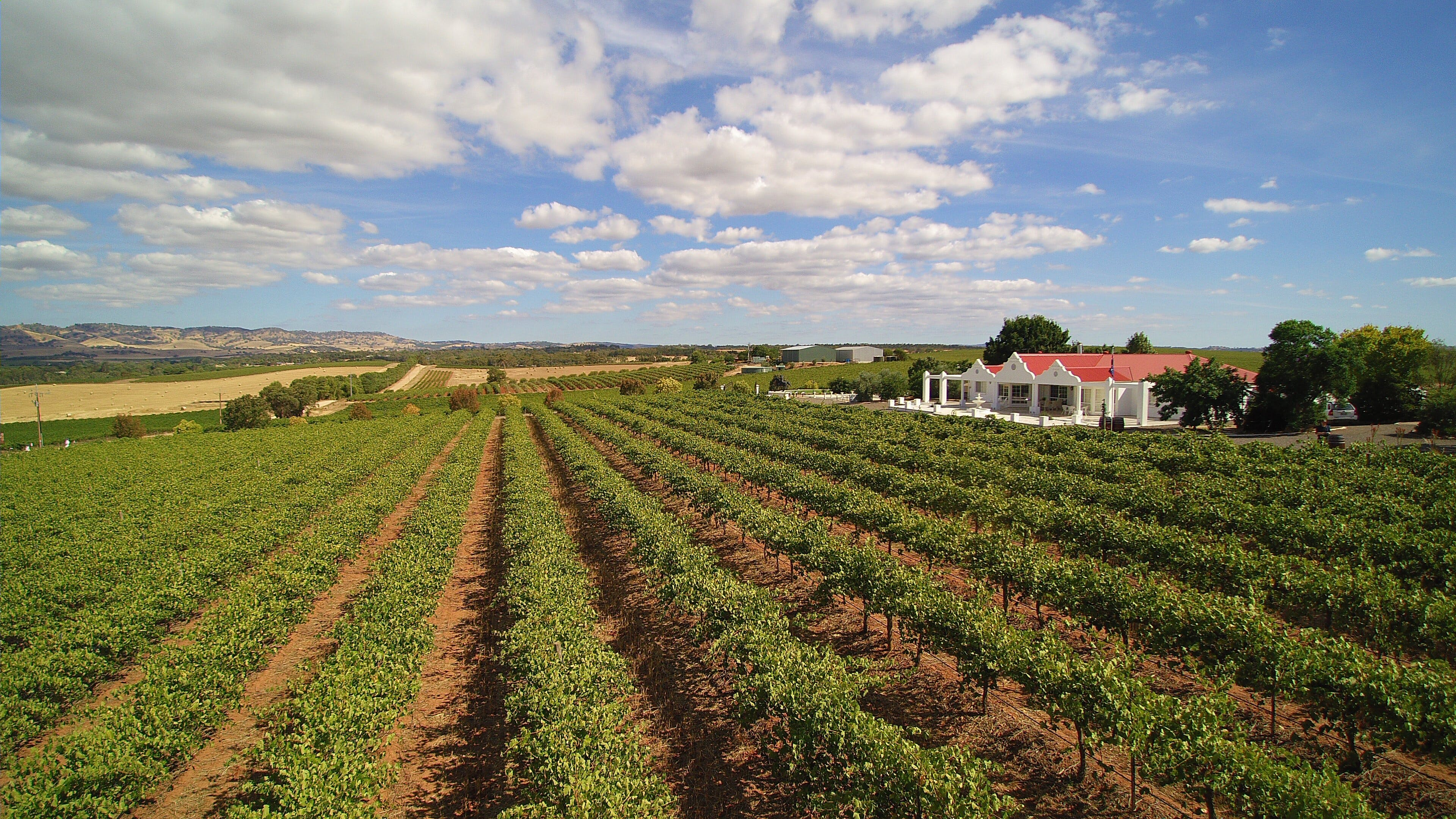 1837 Barossa Luxury Vineyard Cottages - Great Ocean Road Tourism