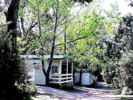 Flinders Caravan Park - Great Ocean Road Tourism