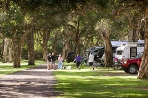 Beachfront Holiday Park - Great Ocean Road Tourism