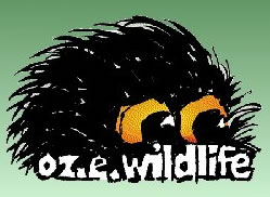 OZe Wildlife - Great Ocean Road Tourism