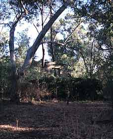 Ghost House Walk Trail Yanchep National Park - Great Ocean Road Tourism