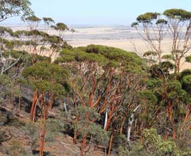 Mount Matilda Walk Trail Wongan Hills - Great Ocean Road Tourism
