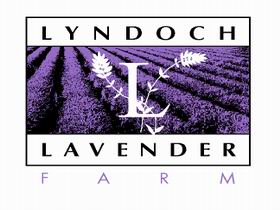 Lyndoch Lavender Farm and Cafe - Great Ocean Road Tourism