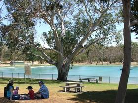 Naracoorte Nature Park and Swimming Lake - Great Ocean Road Tourism