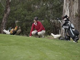 Tasmania Golf Club - The - Great Ocean Road Tourism