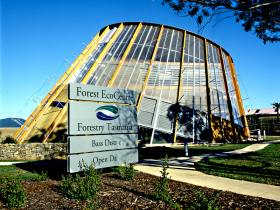 Forest EcoCentre - Great Ocean Road Tourism
