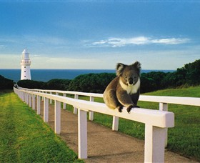 Cape Otway Lightstation - Great Ocean Road Tourism