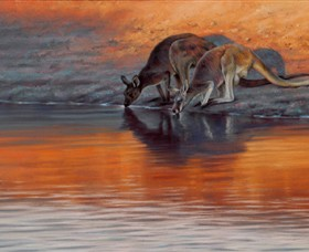 Steve Morvell Wildlife Art - Great Ocean Road Tourism