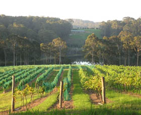 Tilba Valley Wines - Great Ocean Road Tourism