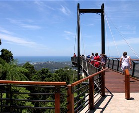 Sealy Lookout - Great Ocean Road Tourism