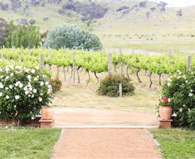 Brindabella Hills Winery - Great Ocean Road Tourism