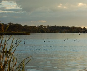 Lake Inverell Reserve - Great Ocean Road Tourism