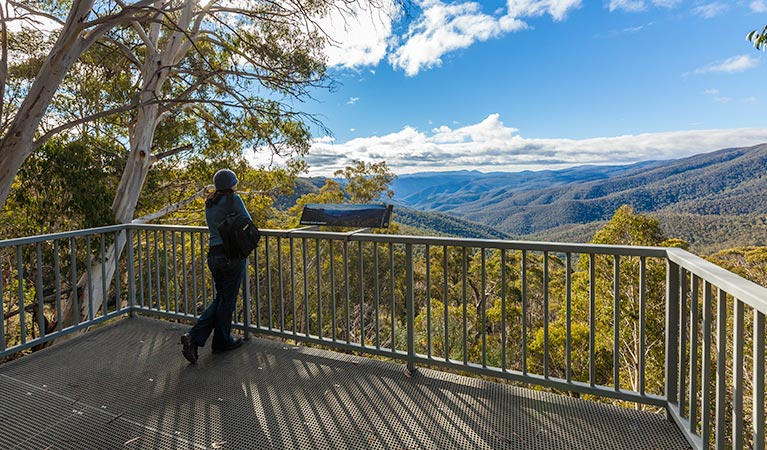 Wallace Creek lookout - Great Ocean Road Tourism