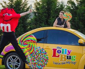 The Lolly Bug