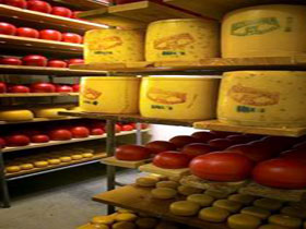 Alexandrina Cheese Company - Great Ocean Road Tourism