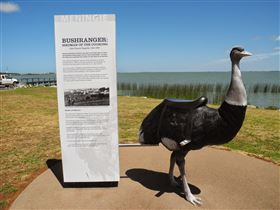 Birdman of the Coorong - Great Ocean Road Tourism