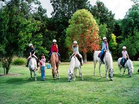 Limestone Coast Horseriding - Great Ocean Road Tourism