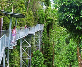 Mamu Tropical Skywalk - Great Ocean Road Tourism
