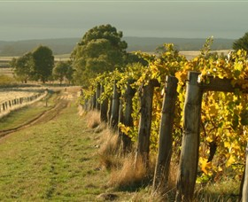 Captains Creek Organic Wines - Great Ocean Road Tourism