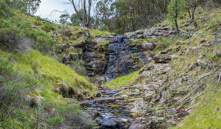 Hopetoun Falls walking track - Great Ocean Road Tourism