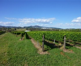 Hedberg Hill Wines - Great Ocean Road Tourism