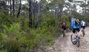 McMahon's Point ride - Wentworth Falls - Great Ocean Road Tourism